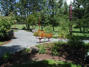 Park Benches sitting in a park trail area